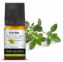 white-thyme-essential-oil